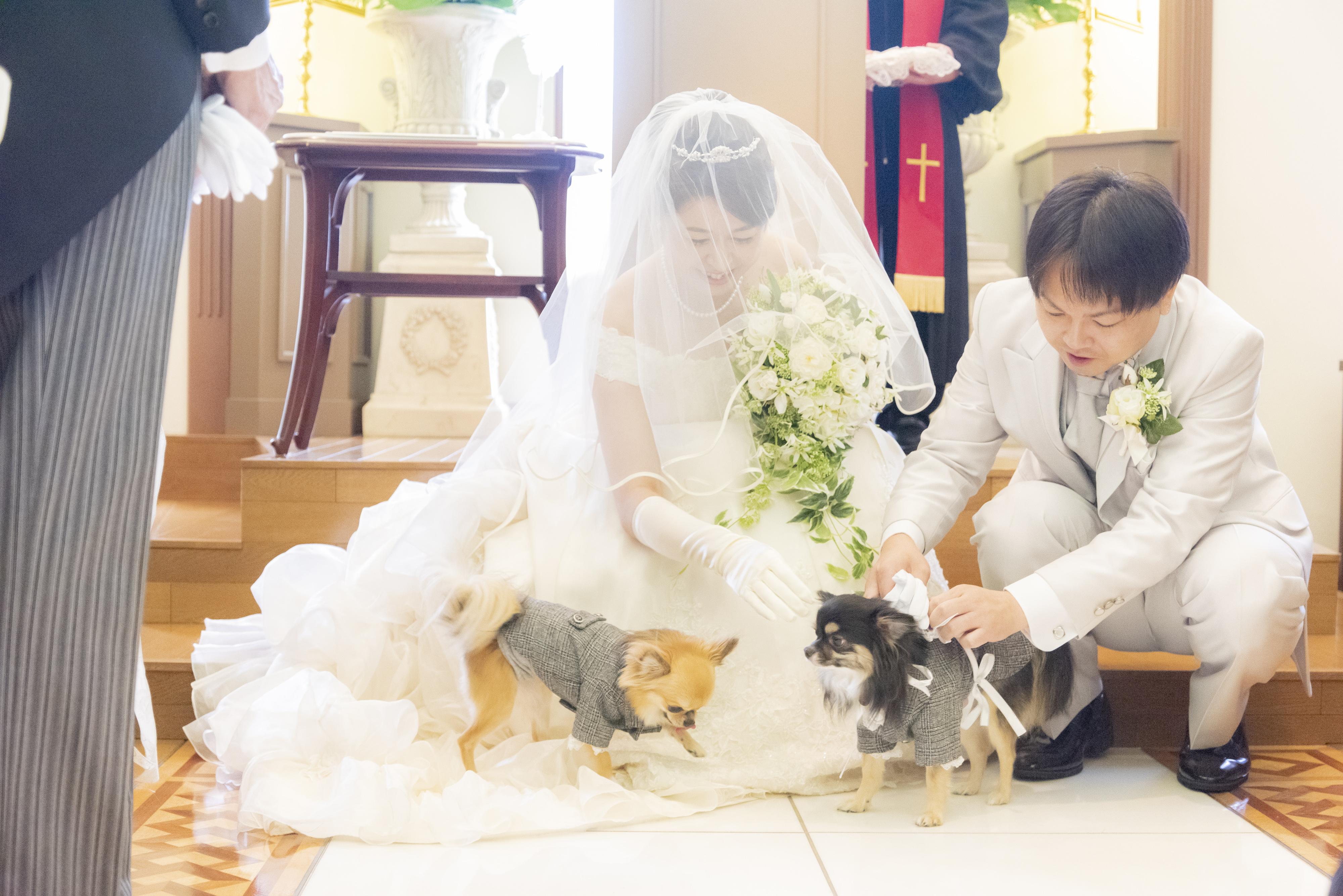 愛犬と一緒の結婚式・披露宴が叶います!